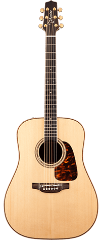 Takamine Dreadnought