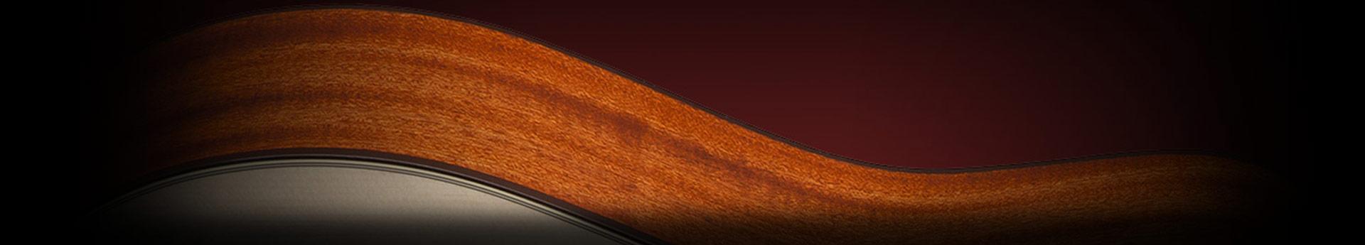 Takamine Gitarre