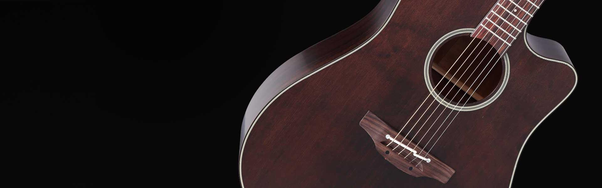 Takamine P1 Dreadnought mit Satin Molasse Finish