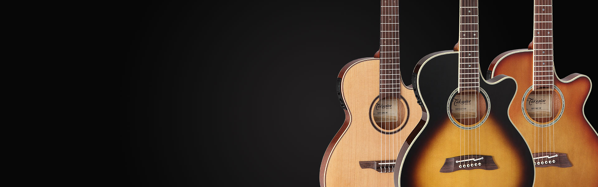 Takamine Thinline Series