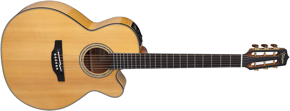Takamine CNCWS2 Front