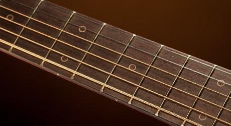 Takamine Gitarren - Griffbrett