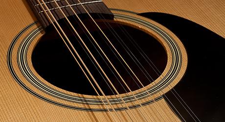 Takamine Gitarre - Rosette