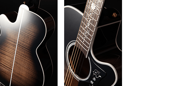 Takamine Thermal Top EF450CTTT